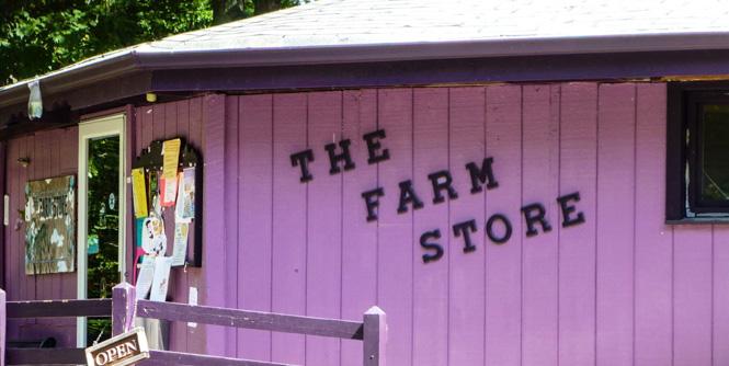 the-farm-store