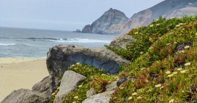 montara-state-beach-california-1