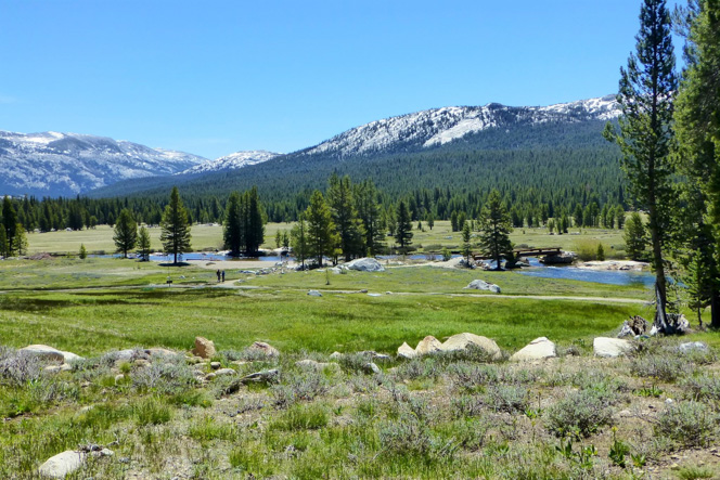 tuolumne-meadows-1