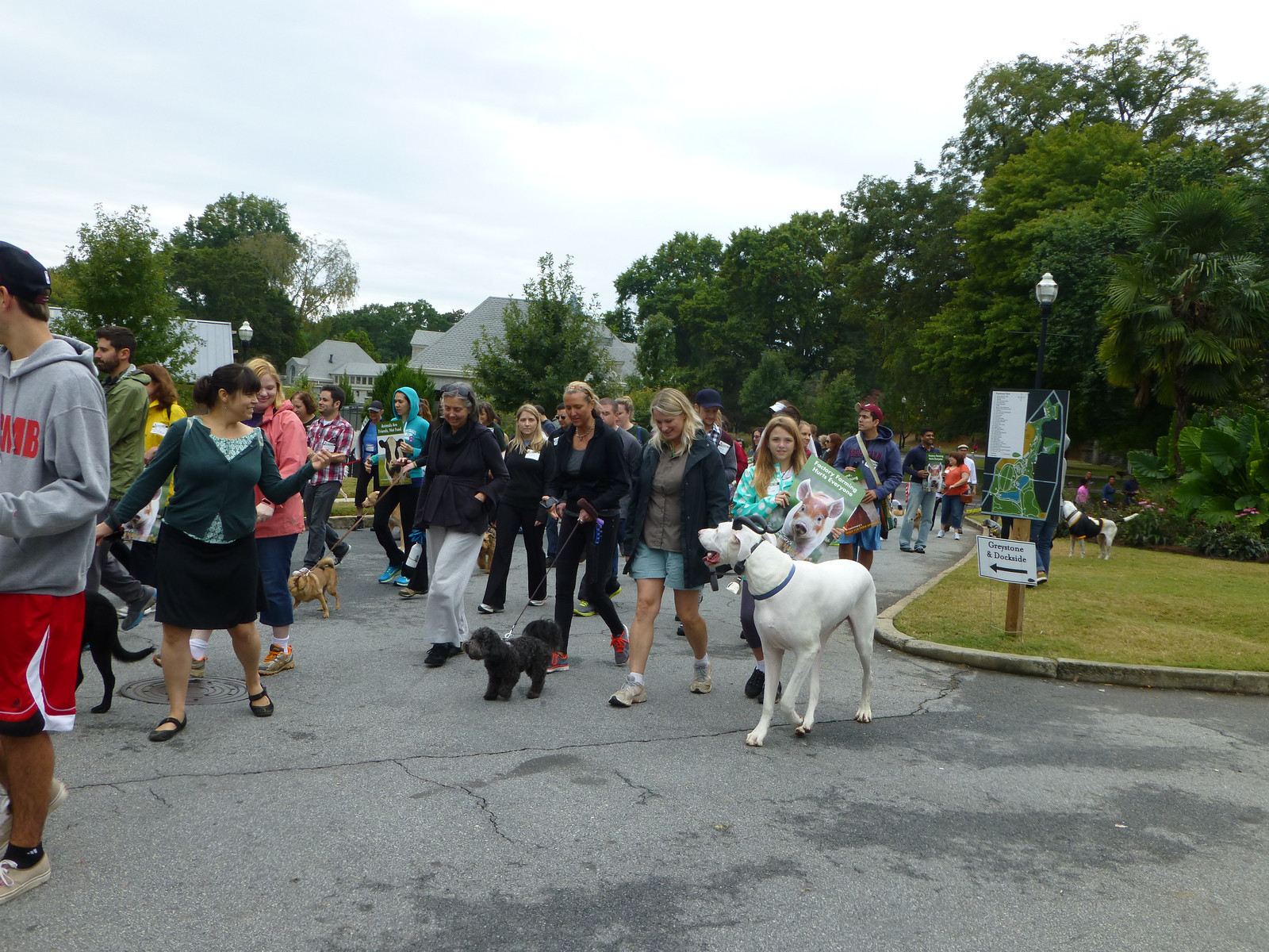 walk-for-animals-2013-10-19-d