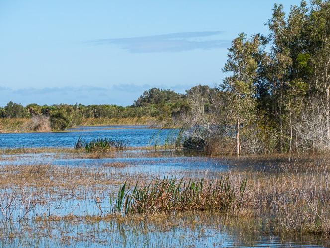 savannas-recreation-area-mostly-1050029