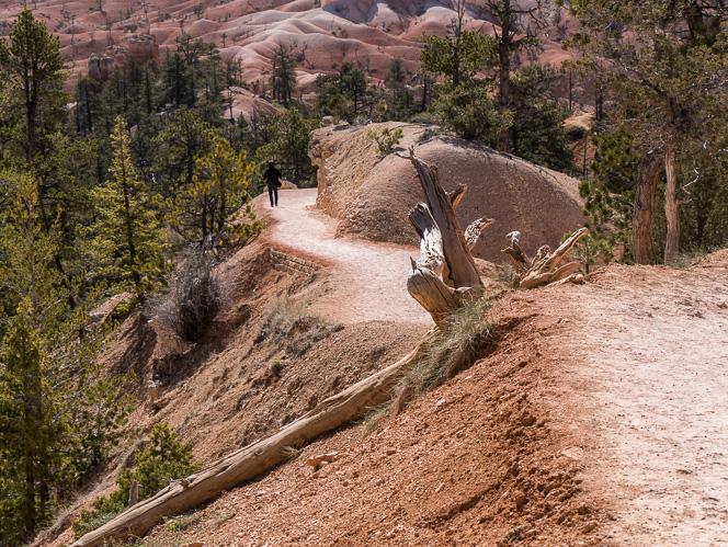 Bryce Canyon-1070192