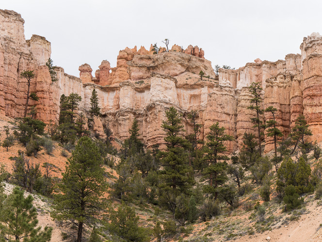 Entering Bryce Canyon-1060797
